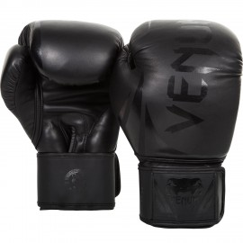 Challenger 2.0 Boxing Gloves - Black/Black