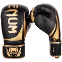 Challenger 2.0 Boxing Gloves - Black/Gold